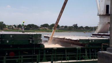 Photo of El Puerto de Santa Fe ya exportó más de 50 mil toneladas de maíz